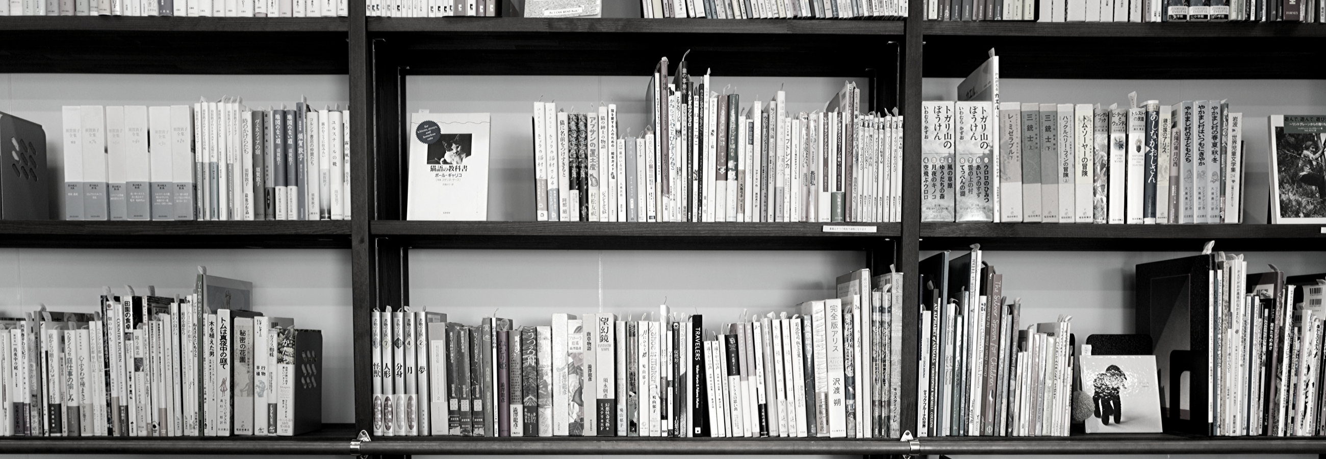 Two sets of bookshelves are shown in black and white.